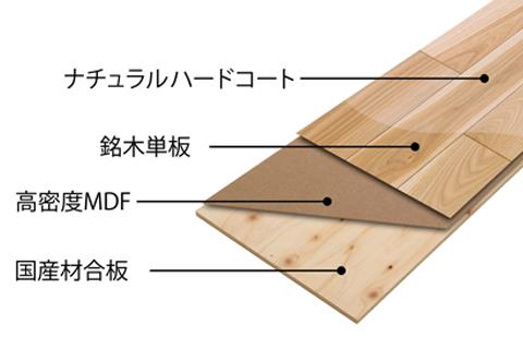 file_name-floor2.jpg