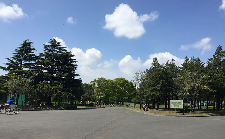 file_name-sinozaki-park.jpg